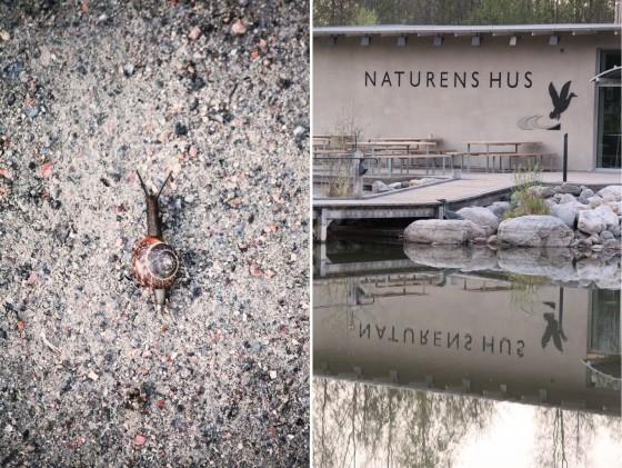 Naturens hus